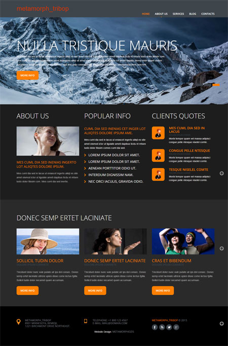 Website templates free website templates free web templates type free mobile template pronofoot35fo Gallery